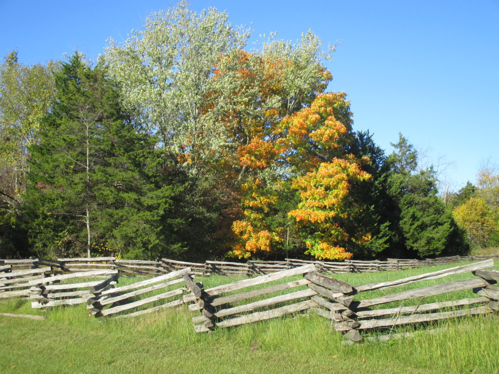 Fence line near Elkhorn Tavern - where the heaviest fighting occurred